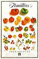 Alice Waters - Tomatoes